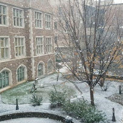 Scene on Campus: Snowfall Outside of Crow Hall ❤️❄️💚 (📸: @washuphysics)