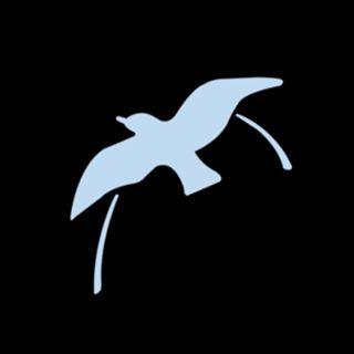 bird & hill.® Australia 🕶