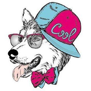 Собака по имени Синди