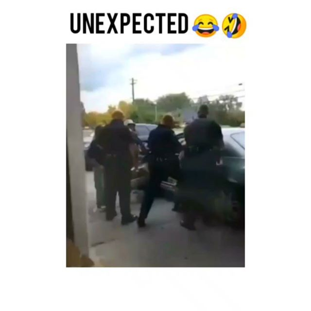 Unexpected thug life 😂  Support our startup @freetemplatestore  #thuglife #savagememes #police #funnymemes #thuglife #thuglifememes #memes #memes #dankmemes #thug #thuglife #funnyvideos #funny #savage #rofl #followus #share #weird #rekt #fthepolice #police #cops #arrested #rofl #owned #slapped