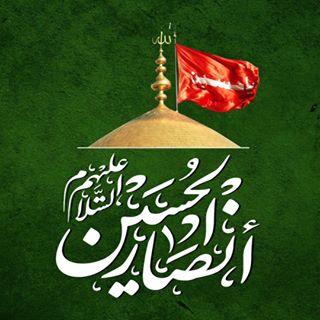 شبكة أنصار الحسين عليه السلام