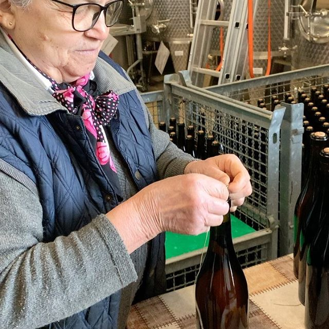 Pierina tying corks onto Lambrusco di Sorbara bottles. By hand. She says she has learnt well after doing this for so many years and has so many callouses on her fingers they don't hurt any more. There is nothing industrial about the wine tours we offer except the glasses you taste the wine from. For more info on our Emilia Romagna wine tours, DM us. 🍷 🍾 . . . . . . #winetours #inemiliaromagna #italianwine #italianwinelover #italianwinetours #visitingitaly #boutiquewinery #epicureanchronicles #winetravel #winetraveler #winetraveller #winetravels #epicureantravel #winetime🍷 #sommlifestyle #sommlife #onlywithyummyitaly #eatinerary #modenaedintorni #lambrusco #lambruscowine #lambruscodisorbara