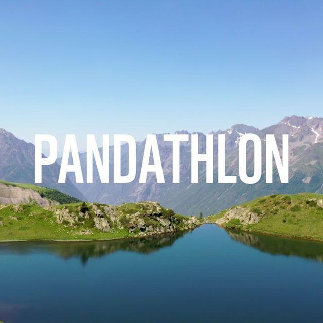 😺 Aider à la préservation du lynx en France tout en participant à un événement sportif super fun et convivial, ça vous dit ? Inscrivez-vous au Pandathlon sur www.pandathlon.fr !  __  #Sport #Outdoor #Lynx #AlpeDHuez #Alpes #Nature #LoveNature #ProtectNature #WWF