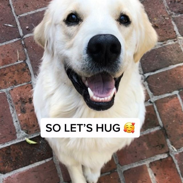 free hugs 😍⁣ ⁣ 🎶 song: high fashion by roddy rich (ft. mustard)