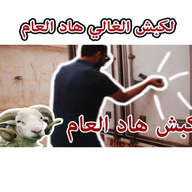 الكبش الغالي هاد العام ههه