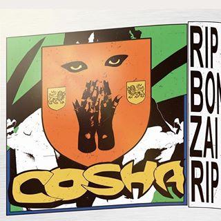 Cosha