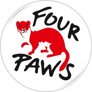 FOUR PAWS   VIER PFOTEN