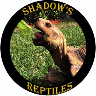 Shadow's Reptiles