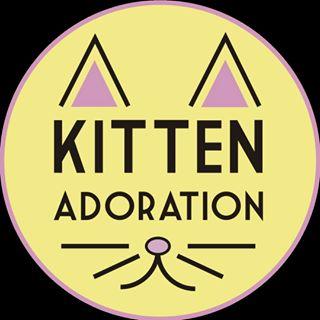 🐱 Kitten Adoration 🐱