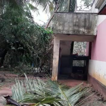 #gaja storm effects in #Aranthangi #Pudukottai district. #cyclonegaja #gajacyclone #gajacycloneupdate #gajacycloneupdates #rains #chennsirains #cyclonegaza #cyclonealert #cyclones tamilnadu #india #peoples #damage #coconut #coconuttrees #bananatrees #banyantrees #house #homerepair #effects #spoil