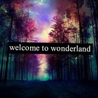 Truth Seeker In Wonderland