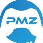 ProModz Custom Controllers