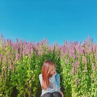 Hanju Park 📫📮📝📖🇰🇷