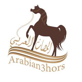Arabian Horse  الحصان العربي