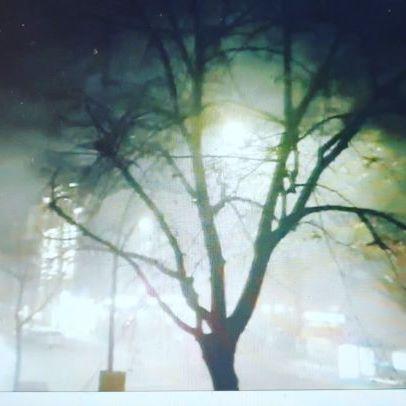 #berlin #berlincity #berlinstyle #berlintagundnacht #berlininstagram #berlin #berlinstreetart #berlinartist #youtube #youtubelive #vlogging #vlogger #youtuber #yurtdışı #almanya #almanyadakitürkler #yurtdışı #seyahat #gezi #almanya
