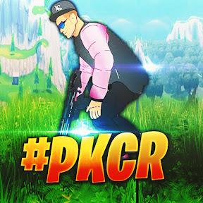 PKTV - Glitching