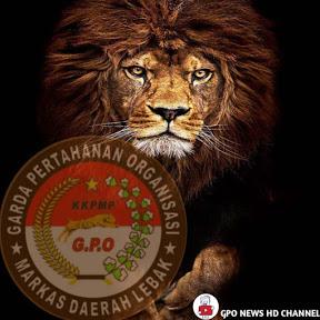 GPO NEWS HD