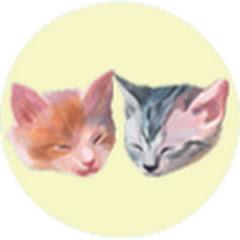 쿠키와 크림이는 아기고양이