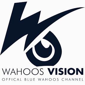 Wahoos Vision