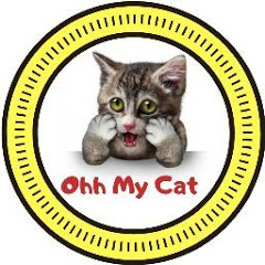 Ohh My Cat