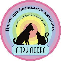 Спасение бездомных животных Приют Дари добро Нск