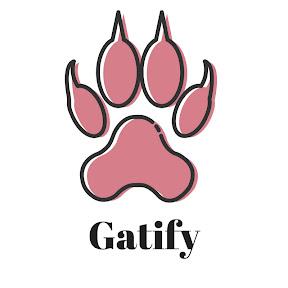 Gatify - Videos para Gatos y Gatas