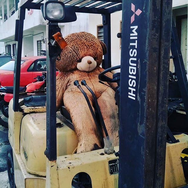 Boss kata esok kena kerja.. Terus abam Bear hilang semangat. Tersandar terus di kerusi itu.. Katanya MERDEKA.. #merdeka61 #bearatwork  #AFevents  #soundandlight