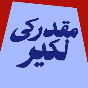 Saleem Raza