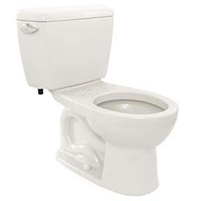 sentient toilet bowl