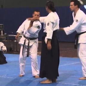 Aikido - Topic