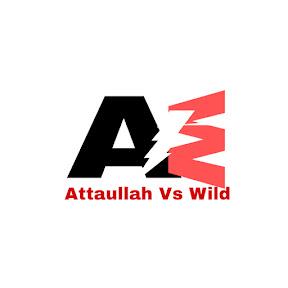 Attaullah vs Wild