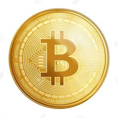 مستثمر العملة الرقمية bitcoin