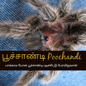 Poochandi பூச்சாண்டி