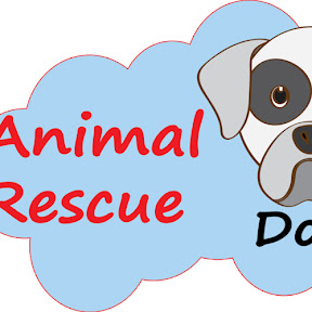 Animal Rescue Dogs