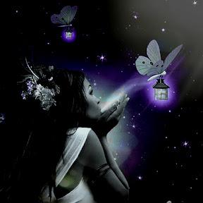 Bella Butterfly
