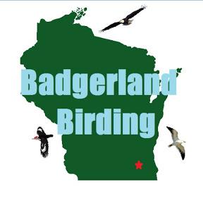 Badgerland Birding