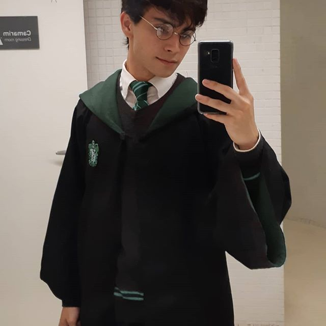 Harry in Slytherin or Gryffindor? #backtohogwarts 🐍🦁🚂