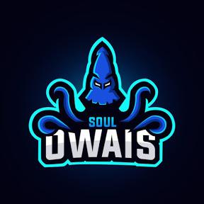 Octo Owais