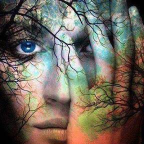 El Espiritu del Bosque Encantado