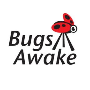虫子醒了bugsawake