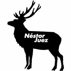 Néstor Juez