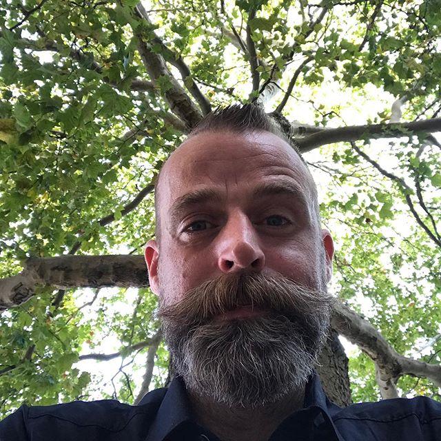 selfie with plane tree 😜 🌳 sweet sunday ———- #instaselfie #selfie #treelove #treelover #plantlover #trees #nature #tree #naturephotography #green #summer #love #naturelovers #photooftheday #beautiful #plants #ig #life #bhfyp #gaygardener #instaplant #instaselfie #gay #gaygermany #tsarnicholasii #gaywithbeard #instagay #menwithbeards #bearded #beardstyle