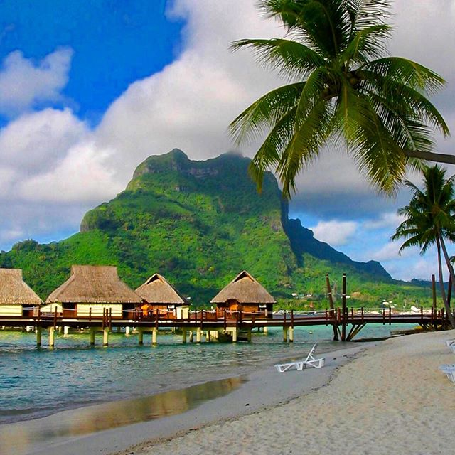 Flashing back to the Tahitian Islands! Such an amazing sight. Ohhhh how I would love to go back! ————————————————- #pocket_beaches #be_one_skybeach #sun_and_beach_sb #_photo_beaches #tv_aqua #splendid_beaches #beachesandnature #beachesnresort #primebeachusa #onceupon_a_beach #ig_worldbeaches #photo_beaches  #passione_fotografica  #photometre #photographclub #earthpix #worldframeclub #igrefined #mint_shotz #igs_newtag #hey_ihadtosnapthat #got__greatshots #ig_fotogramers #ig_divineshots  #ig_brilliant  #ipulledoverforthis #princely_shotz #igworld_global