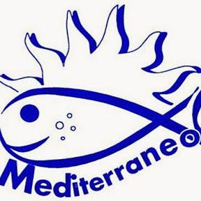 Mediterraneo pesca roma