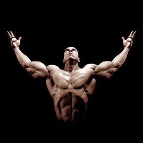 Shredded Motivation