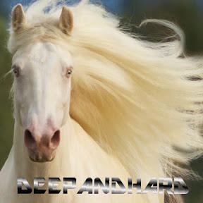 Deepandhard