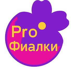 PRO Фиалки