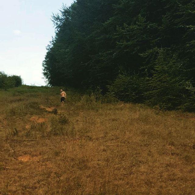 #naturerun #trailrun #runningmotivation