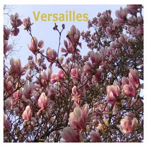 Versailles - Topic