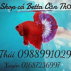 Shop Betta Cần Thơ